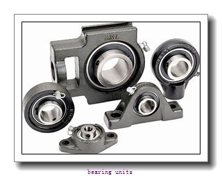 INA RAY40 bearing units