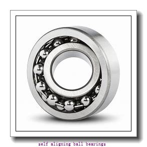 25 mm x 62 mm x 24 mm  KOYO 2305-2RS self aligning ball bearings