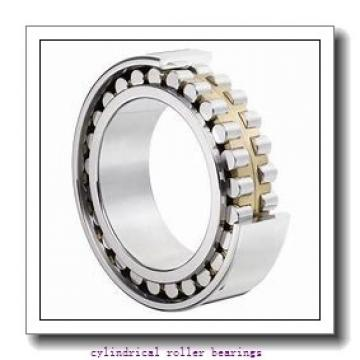 50 mm x 90 mm x 23 mm  ISB NUP 2210 cylindrical roller bearings