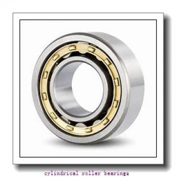 45 mm x 100 mm x 36 mm  NACHI 22309AEXK cylindrical roller bearings