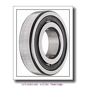 120 mm x 215 mm x 40 mm  CYSD NUP224E cylindrical roller bearings