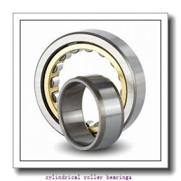 140 mm x 300 mm x 118 mm  KOYO NU3328 cylindrical roller bearings