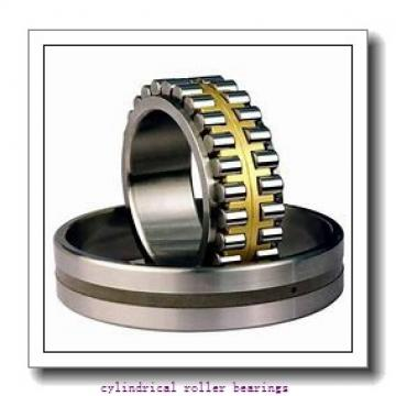 500 mm x 670 mm x 170 mm  NSK RSF-49/500E4 cylindrical roller bearings